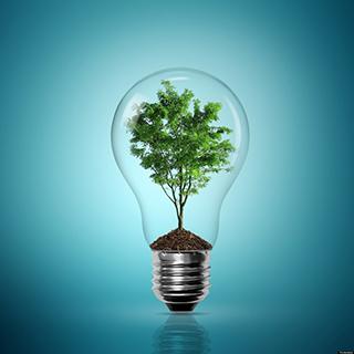 2017年印度再生能源两年并网目标